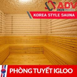 Phòng tuyết Igloo
